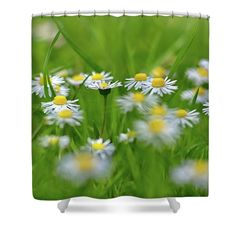 """Daisies Shower Curtain by Ren Kuljovska.  This shower curtain is made from 100% polyester fabric and includes 12 holes at the top of the curtain for simple hanging.  The total dimensions of the shower curtain are 71"""" wide x 74"""" tall. #fresh #freshgreen #inthegarden #flowerpower #flowerromance #showercurtain Nature Artists, Nature Artwork, Curtains For Sale, Floral Pillows, Gifts For Girls, Drawing S, Great Artists, Art Boards, Customized Gifts"""