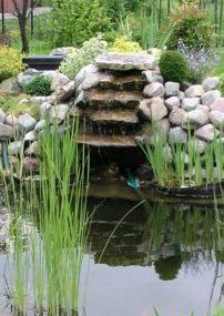 waterfall for fish pond