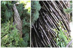 La Cattedrale vegetale o Cattedrale verde di Oltre il Colle (Bergamo) sul monte Arera, seconda cattedrale di Giuliano Mauri dopo la Cattedrale vegetale di Arte Sella