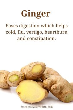 Ginger Root is a medical superfood and detox tea, that contains many health benefits. It can reduce pain, improve brain function, aide in digestion and much more. Natural Remedies For Arthritis, Natural Health Remedies, Liver Healthy Foods, Health Benefits Of Ginger, Cold Remedies, Food Facts, Heartburn, Health And Wellbeing, Detox Tea