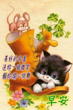 Good Morning Greetings, Good Morning Wishes, Nursing Students, Morning Images, Teddy Bear, Toys, Chinese, Animals, Activity Toys