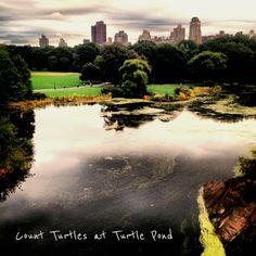 Turtle Pond - 99 Different Things To Do in Central Park