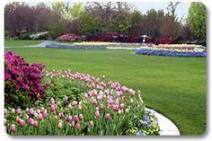 Dallas Arboretum - Spring