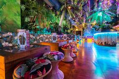 Guests of Lola Lo Derby enter through a real sunken ship to be greeted with a tropical arboretum of hanging plants. - design and specialist fit-out - nightclub - tiki - 2014 - eclectic bars and clubs - derby -