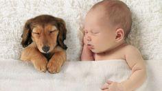 18 zärtliche erste Begegnungen zwischen Hund und Kind