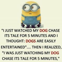 35 Hilarious Minions Memes - 35 Hilarious Minions Memes – lustige Minion-Meme, lustige Minion-Zitate, H - Funny Shit, Really Funny Memes, Stupid Funny Memes, Funny Relatable Memes, Haha Funny, 9gag Funny, Funny Texts, Epic Texts, Funny Humor