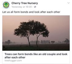 Let us form bonds and look after one another