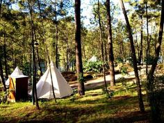 Ínicio - Lima Escape Camping e Glamping Ria Formosa, Parque Natural, Douro, Outdoor Gear, Glamping Tents, Travel, Glamour, Water Pond, The Journey