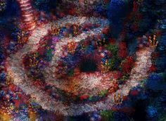 Jellyfish_sea_home_bottom2.png (592×432)