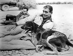 During a break while filming The Misfits: Montgomery Clift in the back, and Clark Gable on front with a dog