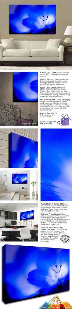 BLUE FLOWERS MACRO