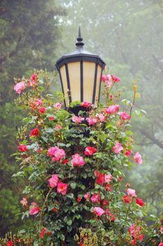 Best Secret Gardens Ideas 10
