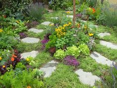 This beautiful little kitchen garden features herbs, fruits and  vegetables, arranged with easy-to-harvest accessibility in mind. As  summer wears on, and some edible plants begin looking a bit tattered,  the semi-formal design and stone path hold the look together.
