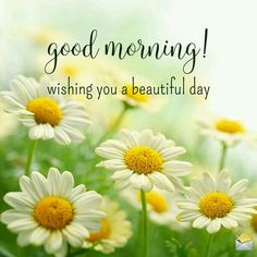 good morning wishes ~ good morning quotes ` good morning ` good morning quotes for him ` good morning quotes inspirational ` good morning wishes ` good morning beautiful ` good morning quotes funny ` good morning images Good Morning Monday Images, Latest Good Morning Images, Good Morning Nature, Good Morning Quotes For Him, Good Morning Inspiration, Good Morning My Love, Happy Morning, Good Morning Flowers, Good Morning Messages