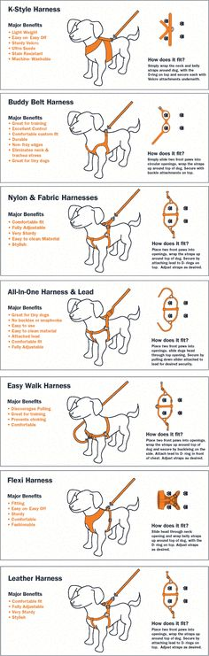 Here are 30 of the best charts we have gathered for dog owners. Great information from dog training, to dog care. Everything you ever wanted to know about your dog can be found in this collection of c -- Learn more about dogs by visiting the image link. Dog Care Tips, Pet Care, Pet Tips, Dog Chart, Types Of Dogs, Dog Training Tips, Safety Training, Crate Training, Leash Training