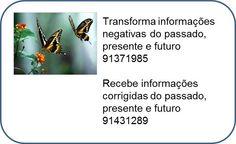 12219490_10203585117547721_5570186415962608307_n.jpg (661×406)
