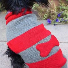 13 Travel Pet Accessories Worthy of Your Dog | Travel + Leisure