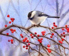 Barbara Fox - Daily Paintings: BERRY BUSH CHICKADEE bird landscape watercolor painting