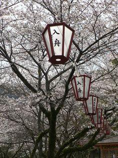 西部公園(徳島県徳島市)