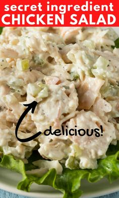 chicken recipes My Grandma's Secret Ingredient Chicken Salad Recipe is one of her most requested! This versatile, creamy chicken salad is packed with fresh flavors! Crispy Honey Chicken, Healthy Chicken, Creamy Chicken, Best Chicken Salad Recipe, Chicken Recipes, Salad Chicken, Simple Chicken Salad, Chicken Salaf, Boneless Chicken