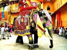 India: Elefante colorato