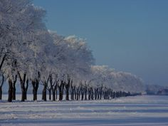 Winter Landscape Near Odense, the Birthplace of Hans Christian Andersen