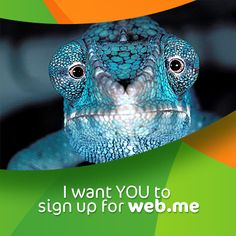 Chameleon Sam says your presence in the editor is significant. Can we count on you?