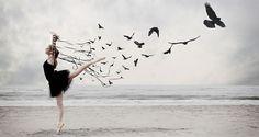 beautiful imagery..