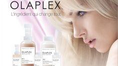 Салоны красоты Шагги | OLAPLEX сделано качественно услуга http://shaggy.com.ua/new_propose/olaplex