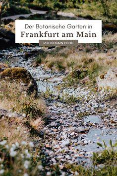 """Botanischer Garten Frankfurt - ein Ausflug in die idyllische Ruheoase, die sogar bei einigen """"Locals"""" noch unbekannt ist. Maine, Urban, Outdoor Decor, Organize, Plants, Blog, Inspiration, Travel, Journal"""