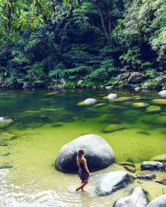 Fresh dips and jungle adventures 🍃 Mossman Gorge, Daintree, Australia.