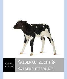 E-Book kostenlos downloaden: K�lberaufzucht und K�lberf�tterung