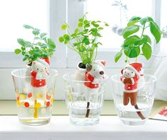 Cute Self-Watering Animal Planters Ceramic Planters, Planter Pots, Clover Plant, Red And White Outfits, Self Watering Plants, Animal Tails, Strawberry Plants, Wild Strawberries, Ceramic Animals