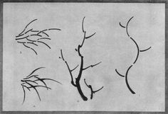 Theory of Tree Growth (1). Practical Application (2). Grass Growth in Theory (3). In Practice (4). Plate XXVIII.