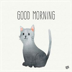 Good morning pic with illustration of cute cat. Good Morning Letter, Good Morning Friends Images, Good Morning My Friend, Good Morning Image Quotes, Happy Morning, Morning Inspirational Quotes, Good Morning Good Night, Morning Pictures, Morning Pics
