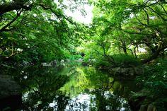 名主の滝。庭園の緑。