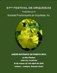 Festival de Orquídeas 2016 #sondeaquipr #festivaldeorquideas #sociedadprorquidistas #jardinbotanicopr #riopiedras #sanjuan
