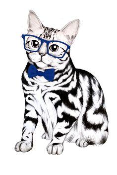 Kitty, nerdy kitty.