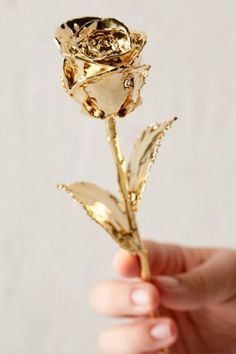 24K Gold Dipped Rose - Urban OutfittersMore Pins Like This At FOSTERGINGER @ Pinterest