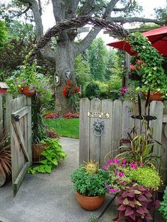 A garden arch that looks great with or without vines