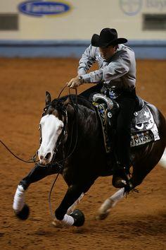 AQHA World Championship 2009 reining horse (spooks gotta gun) Horse Girl, Horse Love, Pretty Horses, Beautiful Horses, Cutting Horses, Westerns, Reining Horses, American Quarter Horse, Quarter Horses