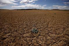 Informe mundial de vulnerabilidad al cambio climático