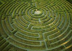 greek maze - Google Search