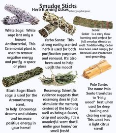 Smudge stick and their different uses. Learn how to use and burn herbs for cleansing! Smudging Prayer, Sage Smudging, Healing Herbs, Natural Healing, Medicinal Herbs, Yerba Santa, Aerosoles, Witchcraft For Beginners, Spiritual Cleansing