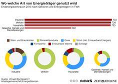 Infografik: Wo welche Art von Energieträger genutzt wird | Statista