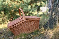 SCOTT kosz piknikowy