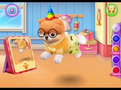 Boo The World's Cutest Dog - baby games for children to play
