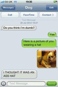 Texts from dog....hahaha