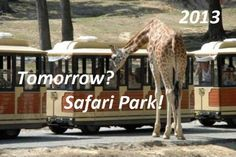A day out with the kids at Safari Park – 2013... Animals and kinds: what a couple!