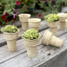 I pinned this Ice Cream Cone Planter from the Napa Home & Garden event at Joss and Main!